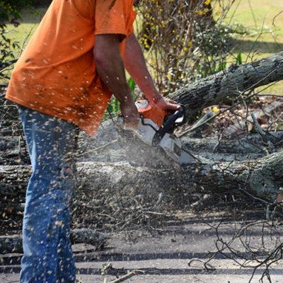 Champion Tree Service provides 24/7 emergency tree service and around-the-clock emergency tree work in Birmingham